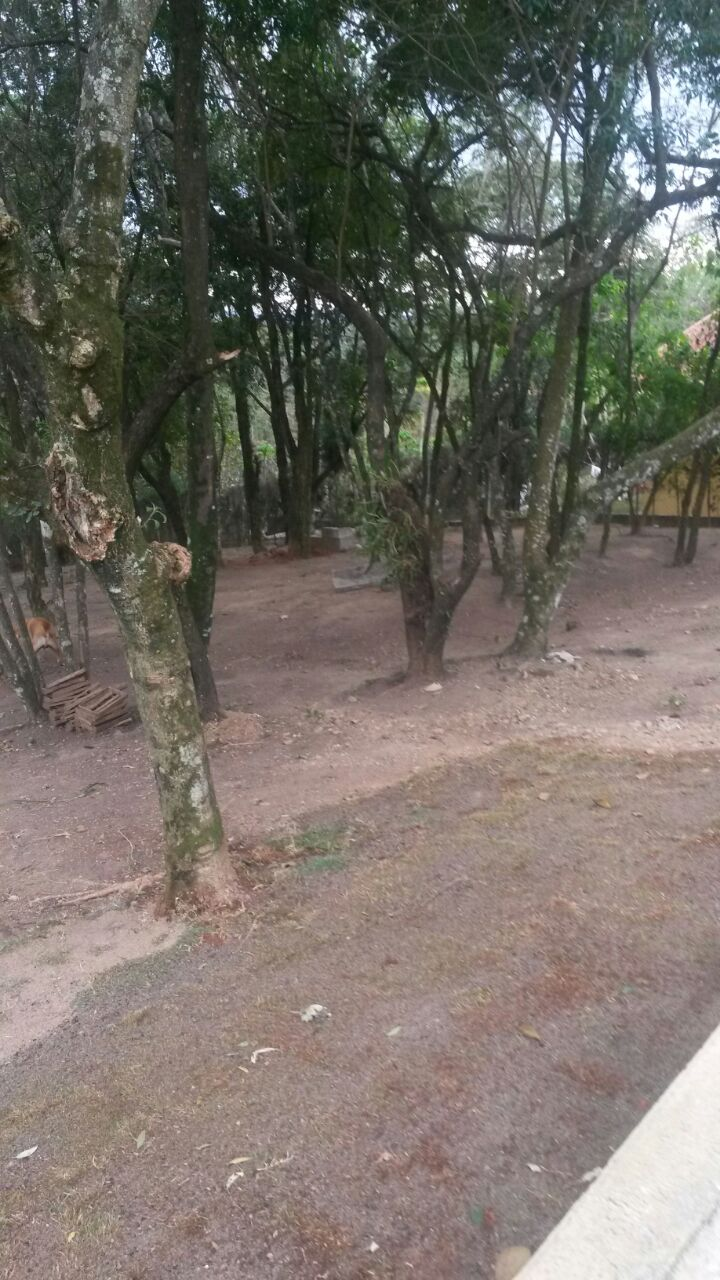 Vendo excelente Chácara em  condomínio  fechado na Cidade de São Roque - foto 18