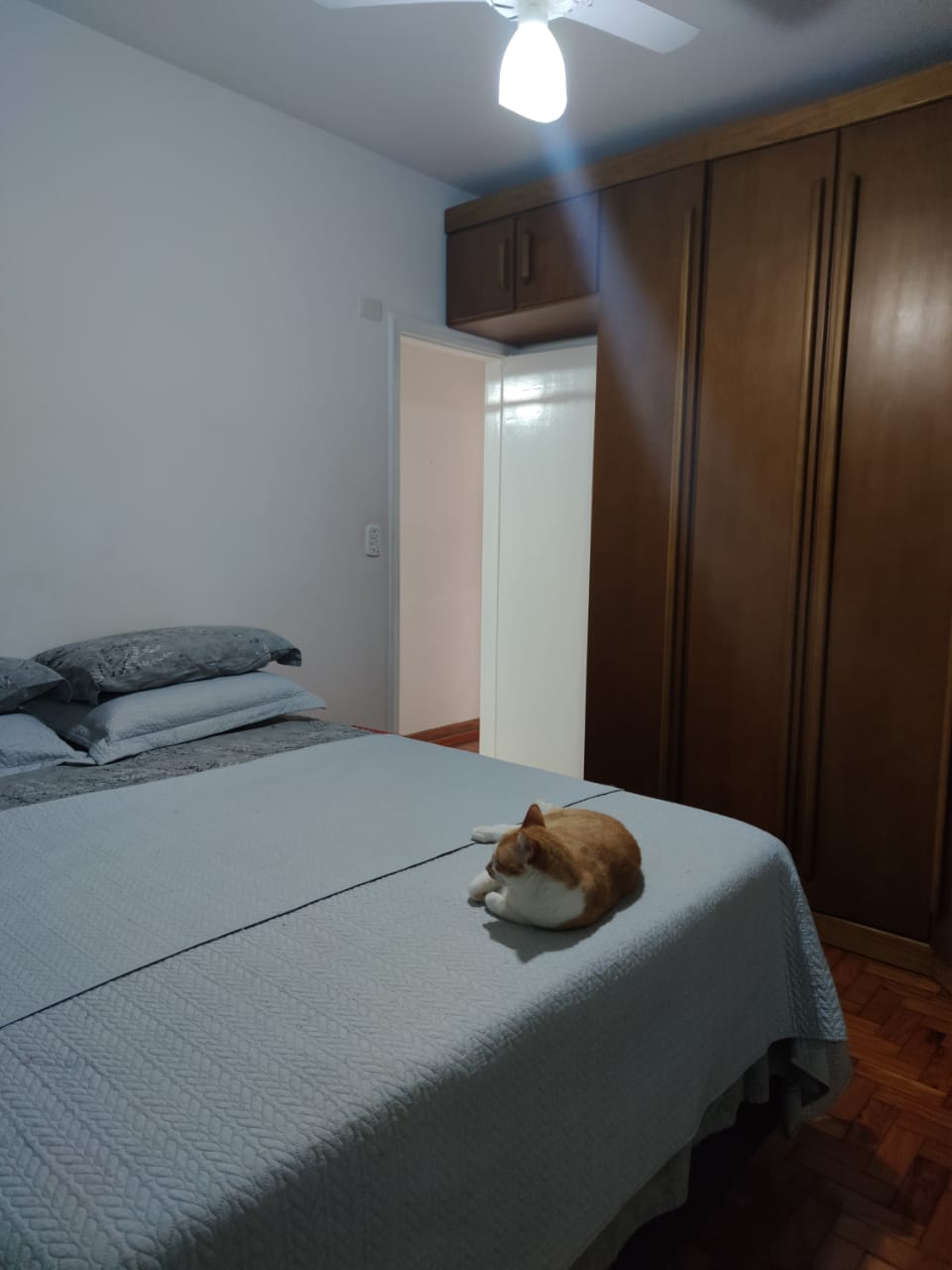 Apartamento no Gonzaga 2 dormitórios ótimo estado - foto 19